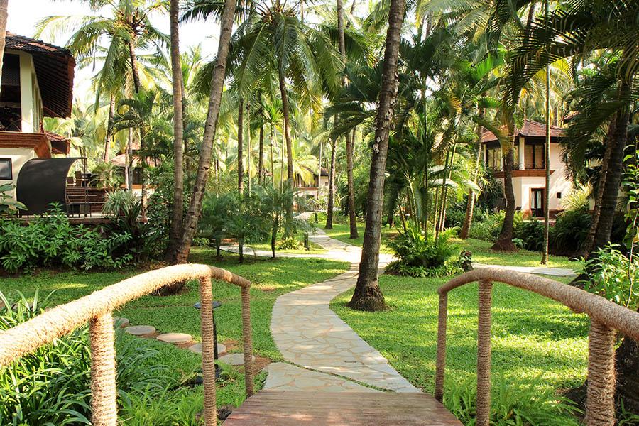 Coconut Creek - Goa - Path