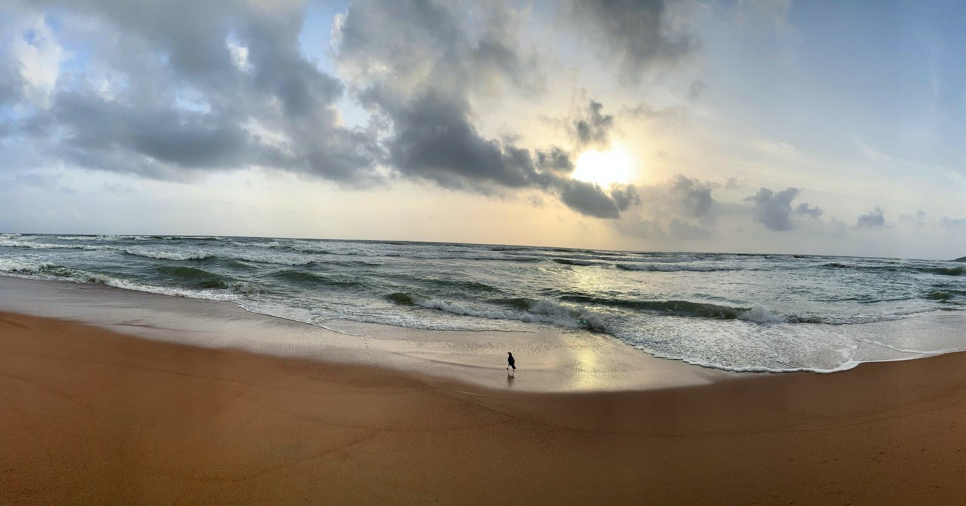 Goa South