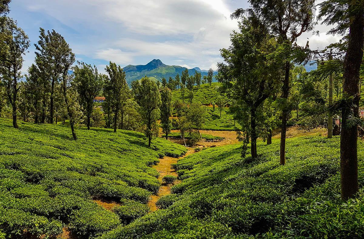 Tamil Nadu, India featured