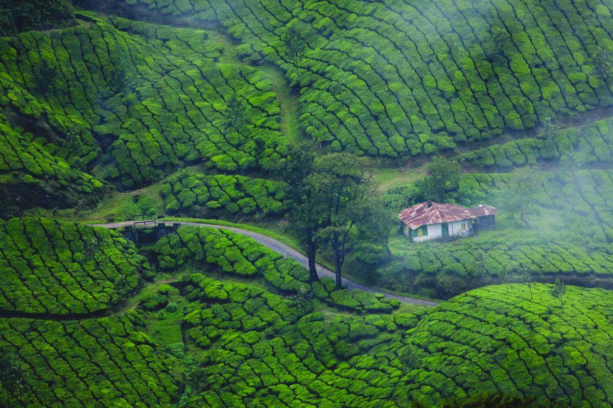 Hidden Gems of Kerala