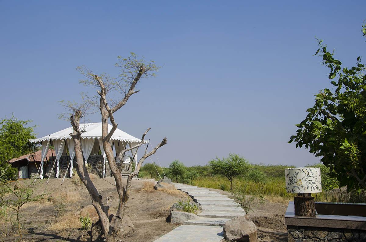 Black Buck Lodge - Velavadar Gujarat - Icon