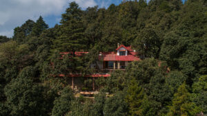 Mary Budden Estate - BINSAR WILDLIFE SANCTUARY - UTTARAKHAND - Himalayas - Icon