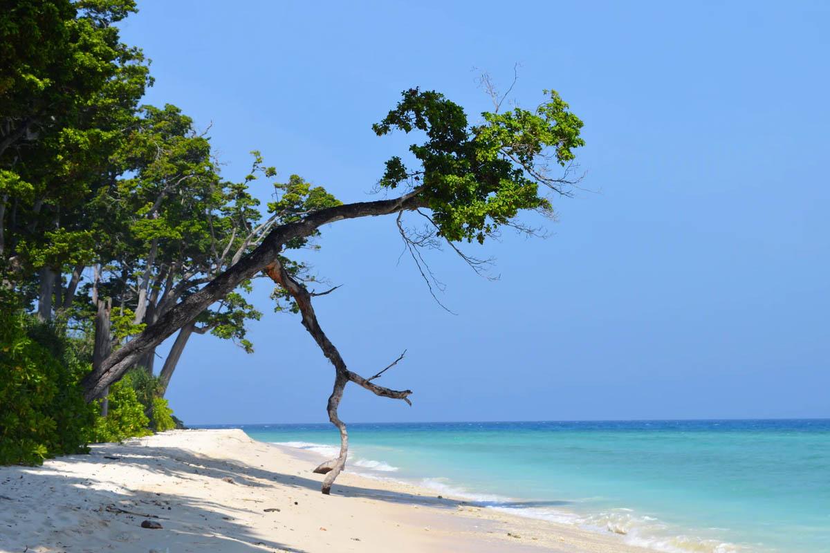 Coromandel Coast & Andamans
