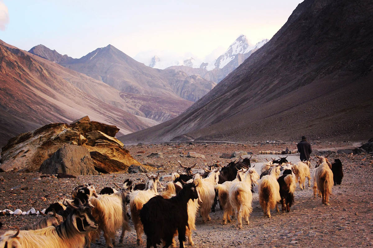 Himalayas, Ladalkh, India Connections