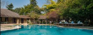 Jims Jungle retreat - pool
