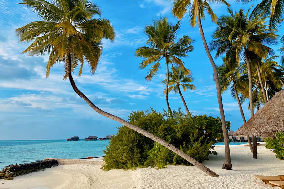 Kerala and Maldives - Mid Range Tour