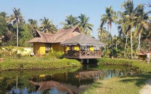 Ameya - Kerala Backwaters - icon