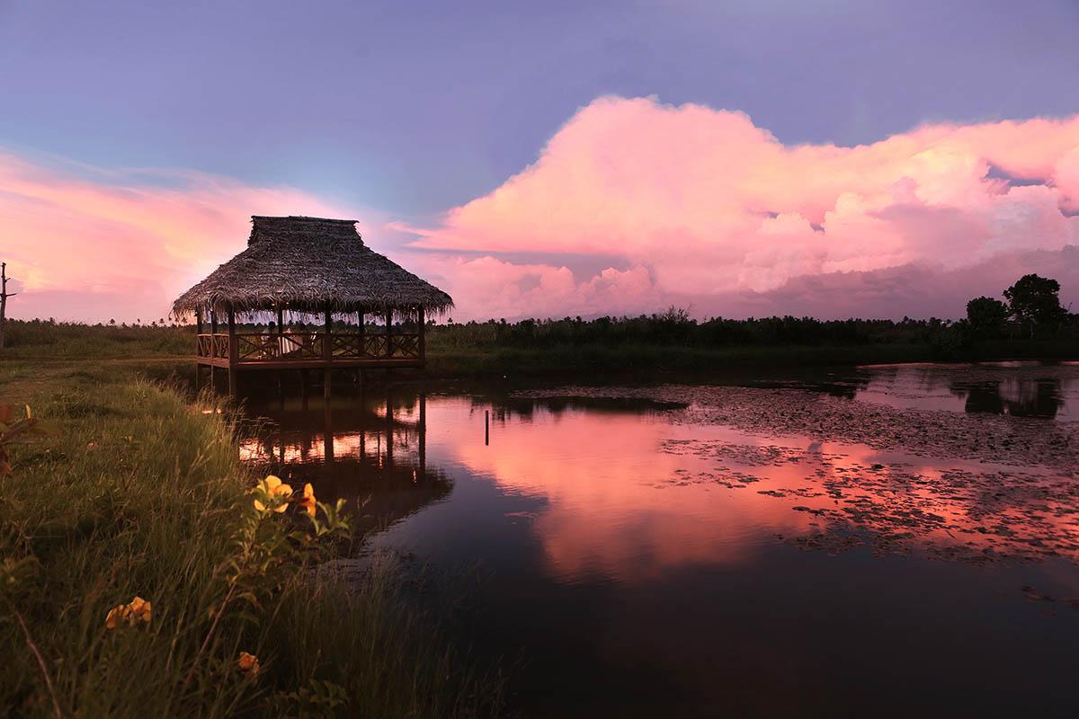 Coconut Lagoon - Kerala Backwaters - Big2