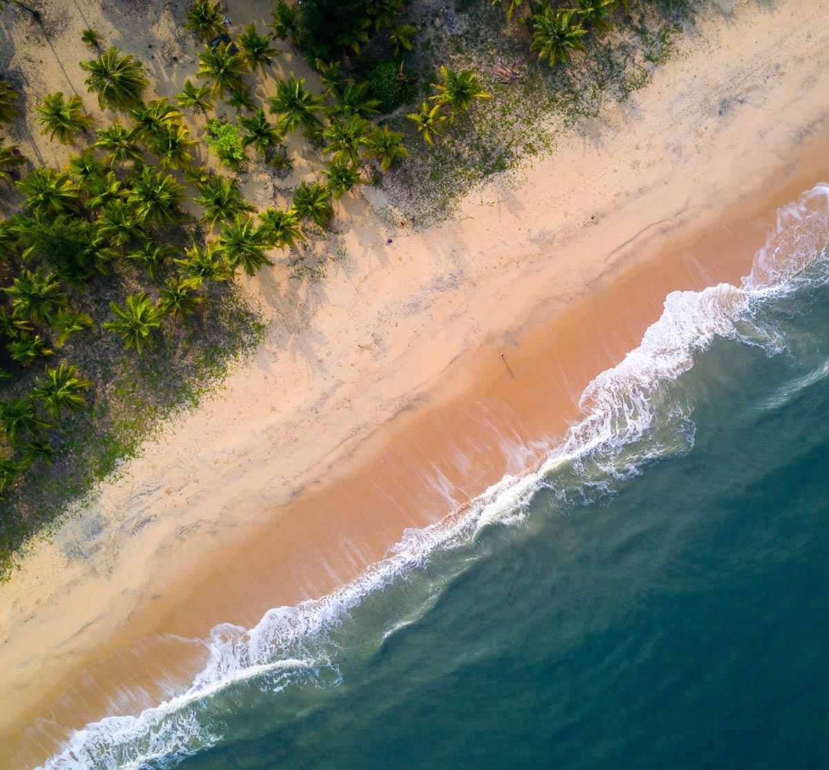 Marari Beach - Mararikulam - Central Beaches - Kerala Big2