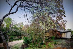 Banjaar Tola, A Taj Safari Kanha - Central - Icon