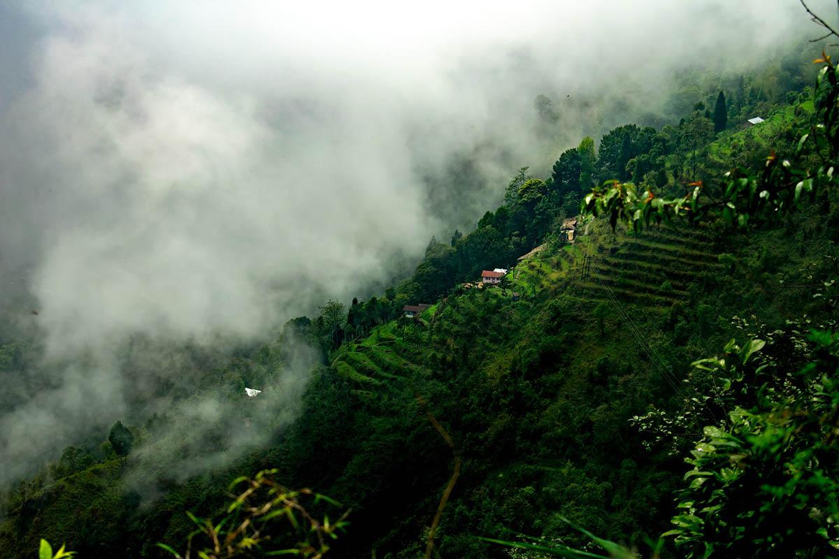 Darjeeling and Kalimpong - Eastern India