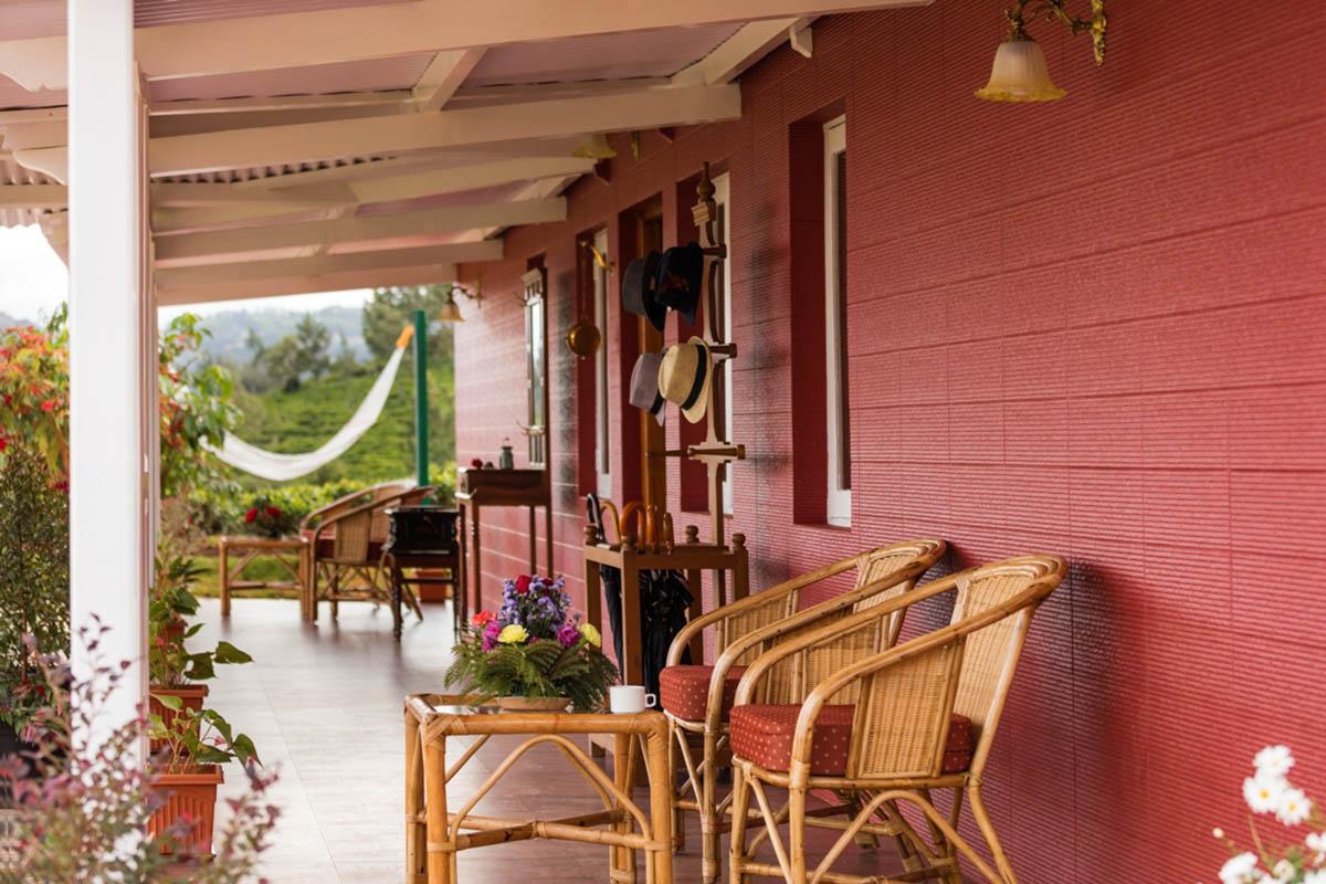Tea Nest Nightingale - Kotagiri - Hill Stations - Tamil Nadu - Big 1