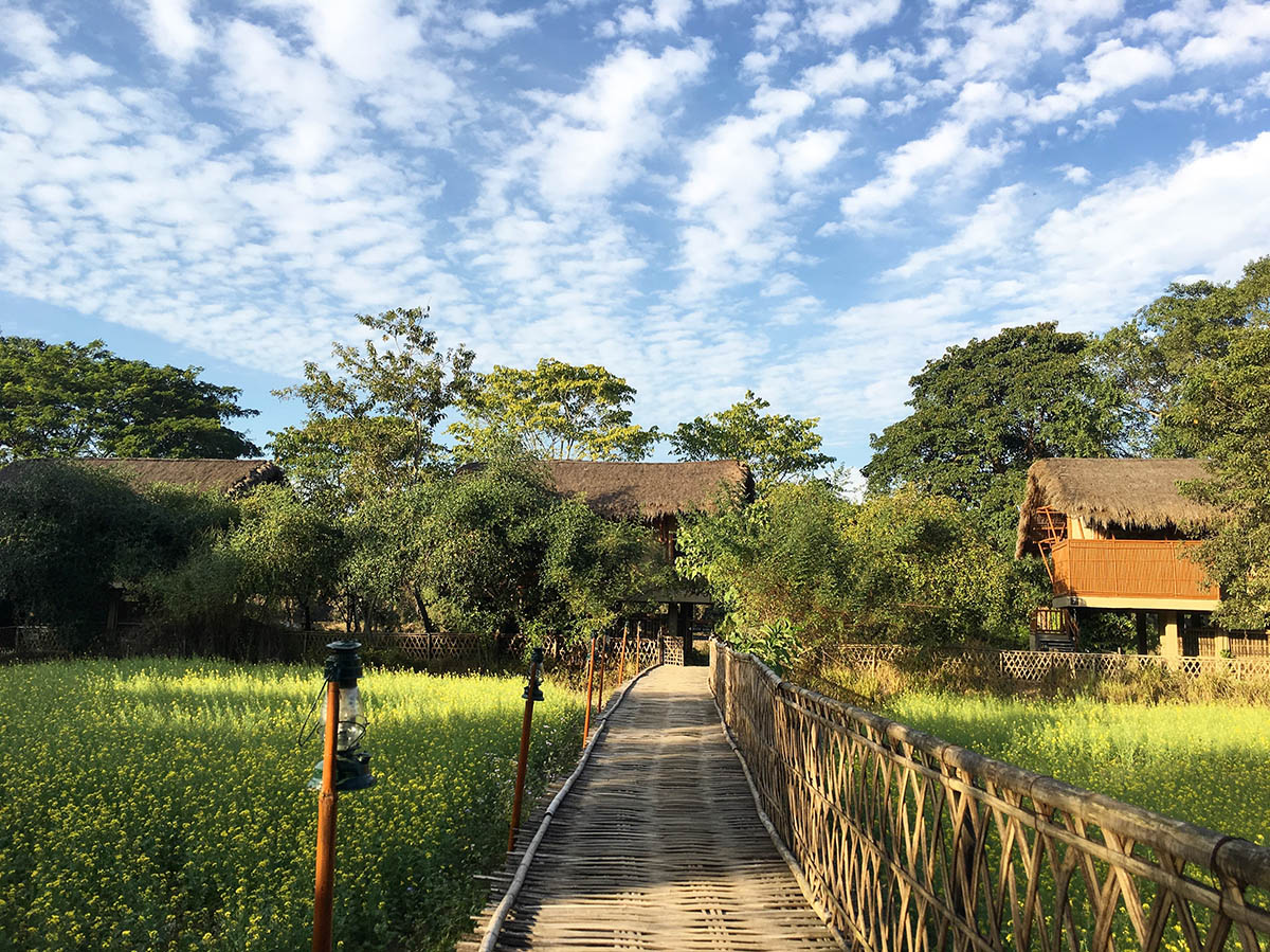 Diphlu River Lodge Kaziranga National Park - North East - Big 1