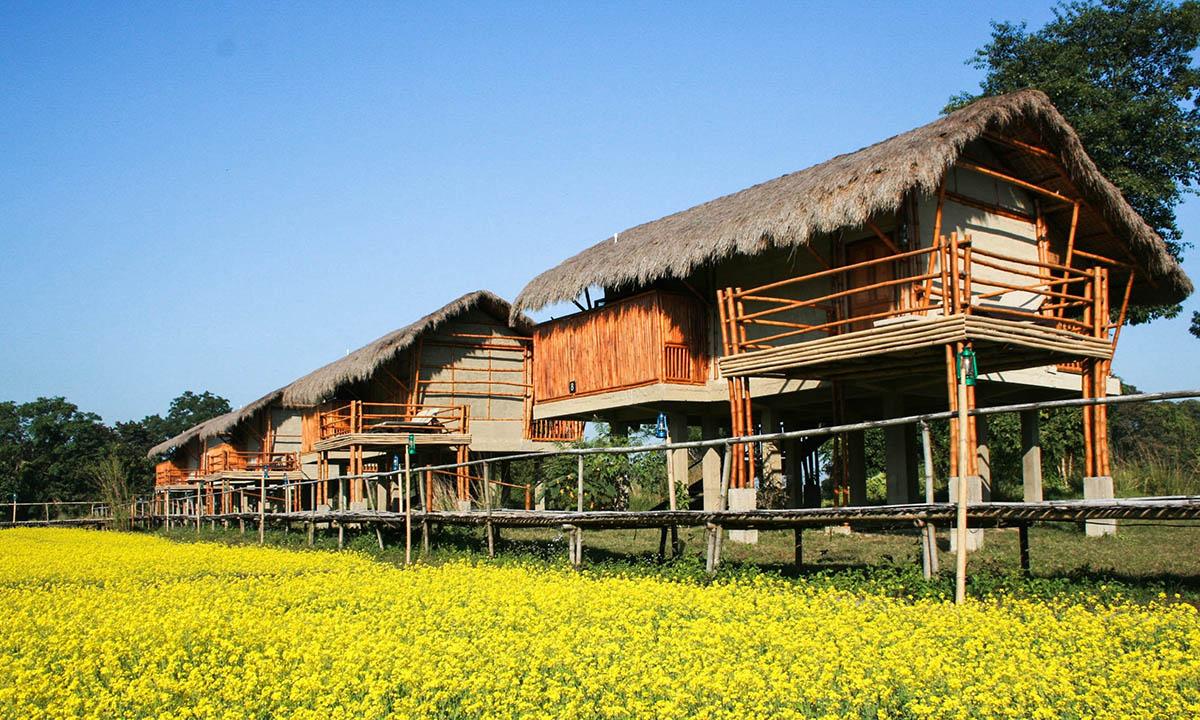 Diphlu River Lodge Kaziranga National Park - North East - Big 2