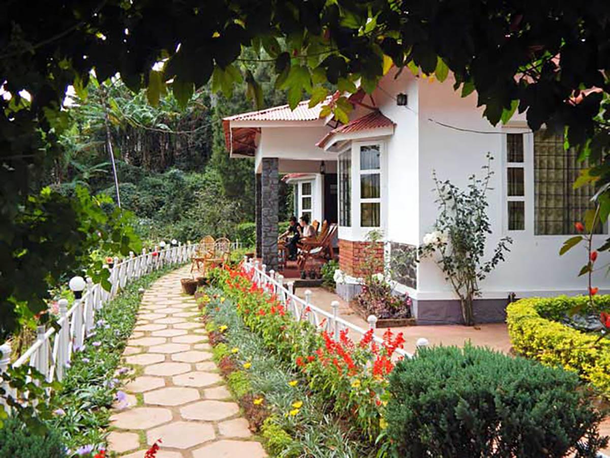 Olive Brook - Munnar - Kerala - Big 1