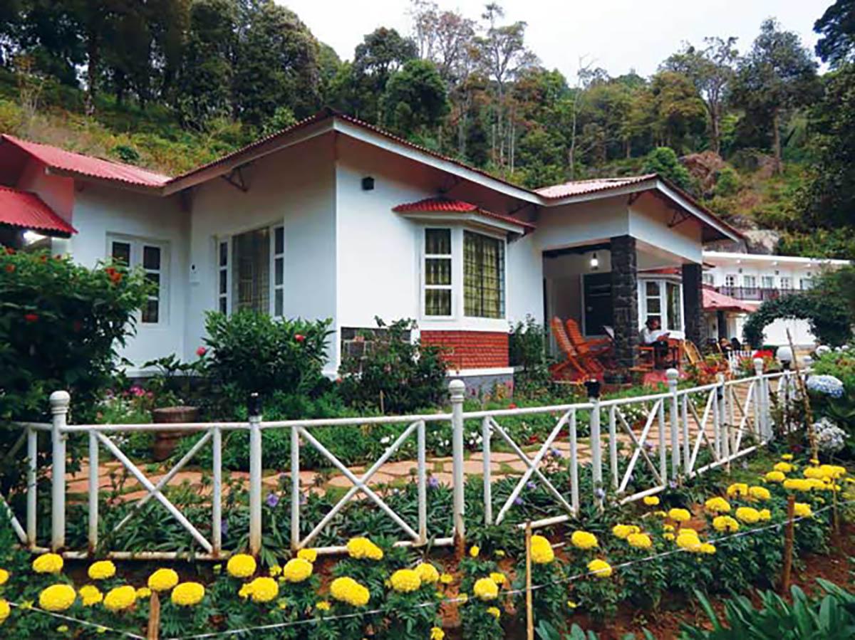 Olive Brook - Munnar - Kerala - Icon
